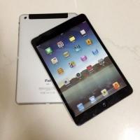 iPad Mini Mockups Surface Online [Photos]